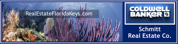 email header purple coral 800x200 by Coldwell Banker Schmitt