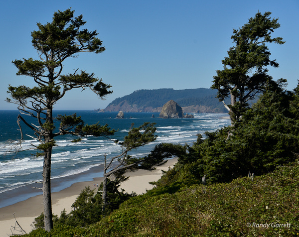 Oregon Coast by Randy Garrett