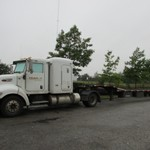 Truck Lines - T