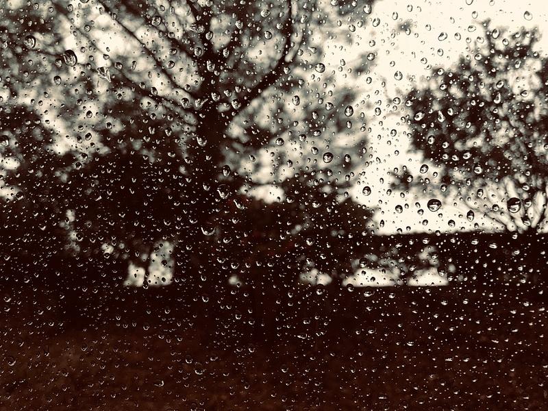 Rain and Nature