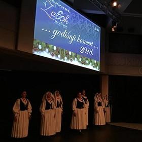 Ansambl Zabok - Godišnji koncert 2018.