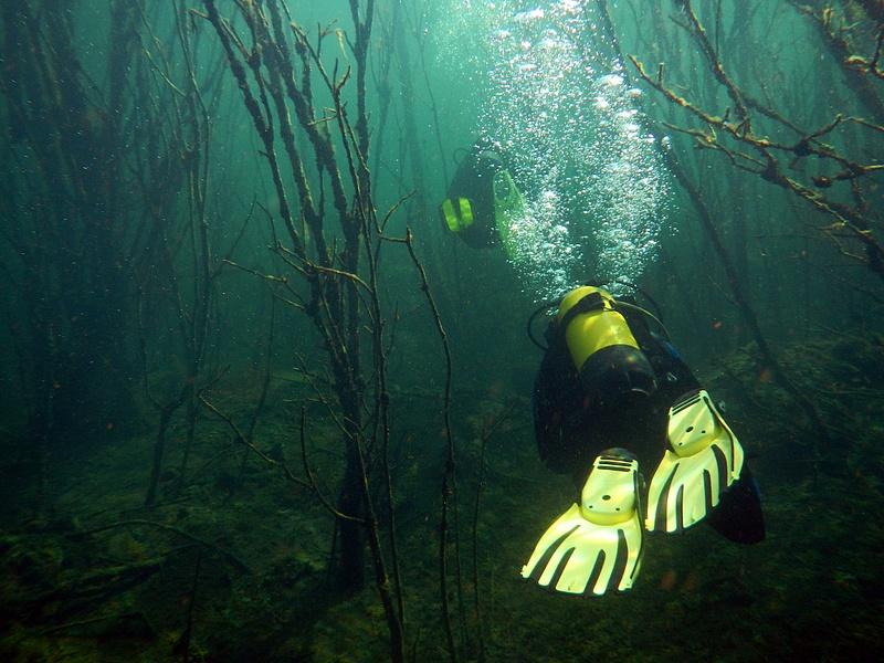 Rummu, Diving