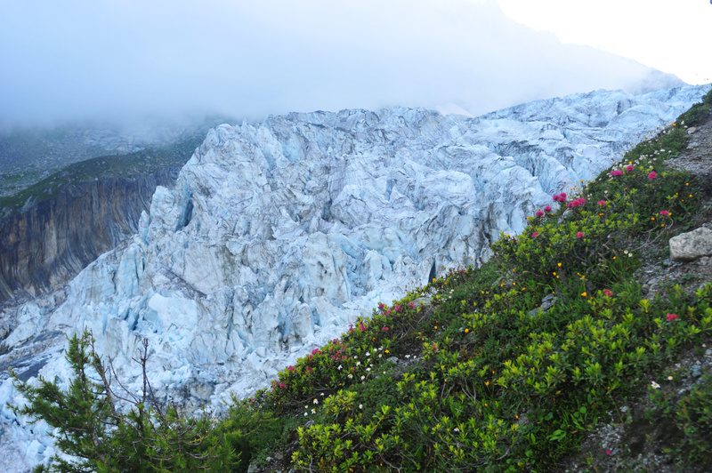 French Alps, Glacier - In the Morning Fog