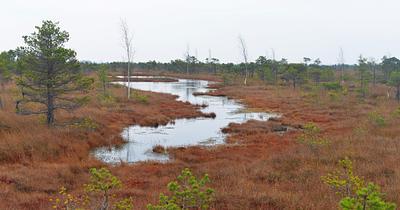 Latvia, Kemeri - National Park