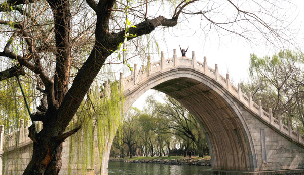 Bridge of the Summer Palace by Victor Francuzov