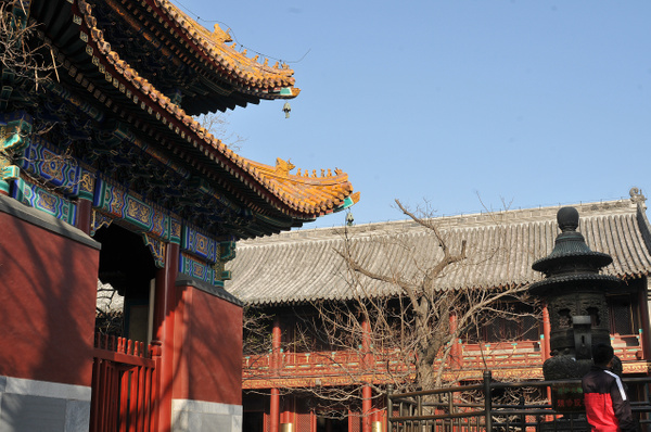 Buddhist Temple, Beijing by Victor Francuzov