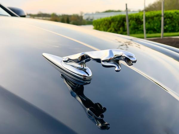 Jaguar x by autosales by autosales