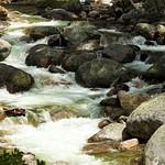 South Silver Creek - May 2014