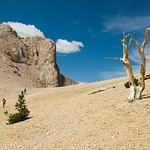 Mount Moriah Nevada - July 2009