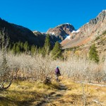 Lundy Canyon - October 2015