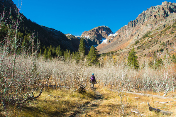 Lundy Canyon - October 2015 by Ski3pin