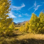 Eastern Sierra Fall Colors - October 2016