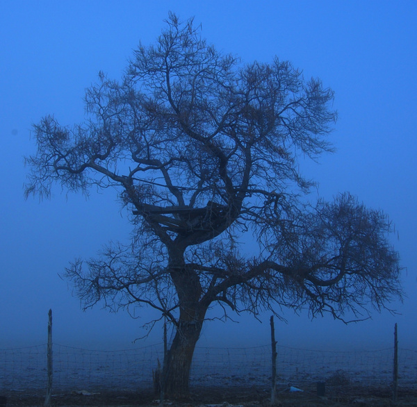 2011-01-29 14:40 by Ernest Chip Butler