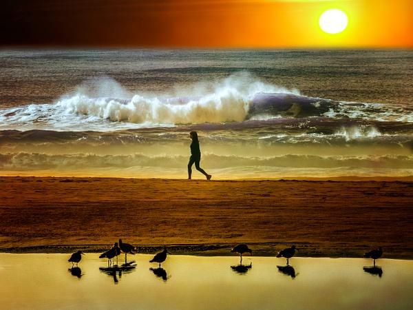 Ocean Beach - San Francisco - Roxanne Bouché Overton