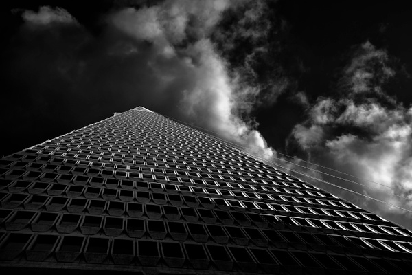 Transamerica 3 - Architectural Abstracts - Roxanne Bouche Overton