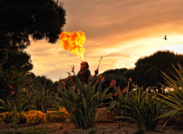 Fire Breather by Alpha Whiskey Photography
