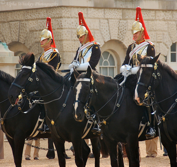Royal Horseguards by Alpha Whiskey Photography