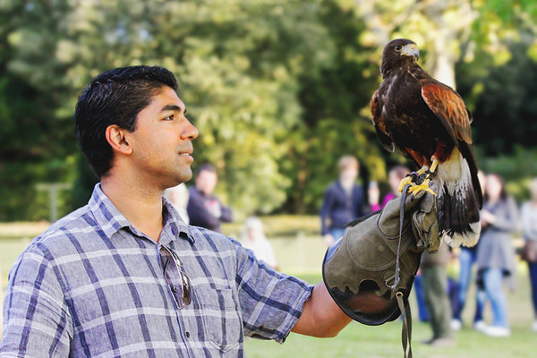 Falconry by Alpha Whiskey Photography by Alpha Whiskey...
