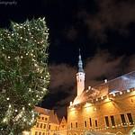Christmas in Tallinn
