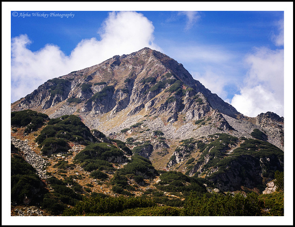 Pirin by Alpha Whiskey Photography