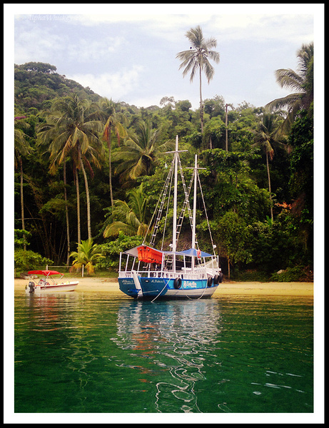 Ilha Grande by Alpha Whiskey Photography