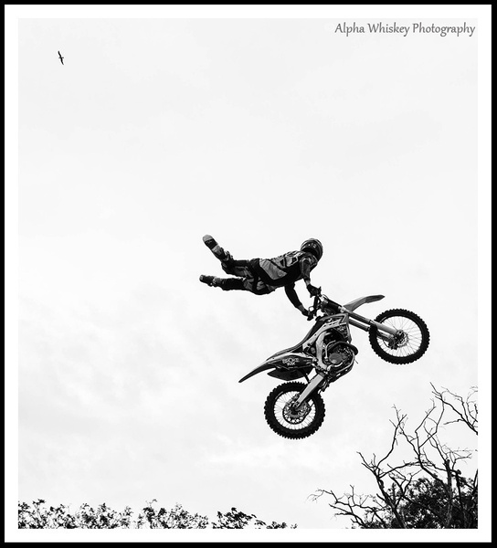 Stunt Display by Alpha Whiskey Photography