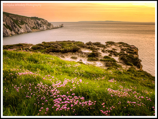 Isle Of Wight by Alpha Whiskey Photography by Alpha...