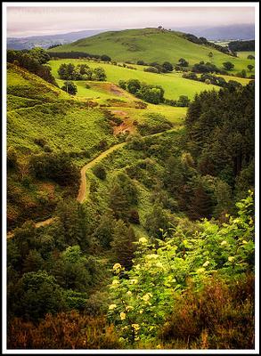 Drive Through Wales