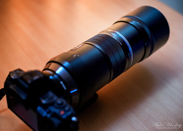 Olympus 300mm F/4 by Alpha Whiskey Photography