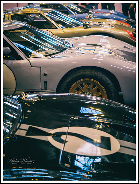 8 by Alpha Whiskey Photography