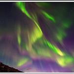 Northern Lights Reward