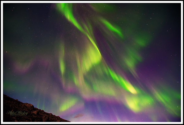 Auroras by Alpha Whiskey Photography