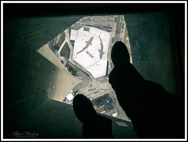 19 Glass Floor CN Tower by Alpha Whiskey Photography