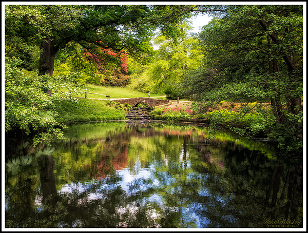Wakehurst Place Revisited by Alpha Whiskey Photography