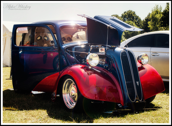 16 by Alpha Whiskey Photography