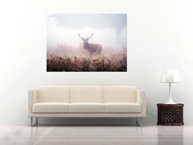 8 deer1
