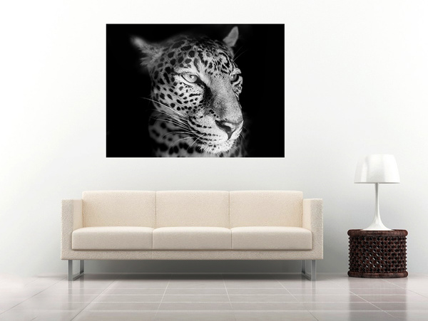 27 leopard by Alpha Whiskey Photography