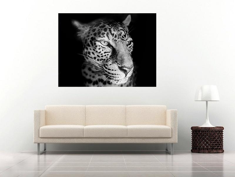 27 leopard