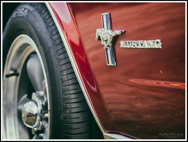 5 by Alpha Whiskey Photography
