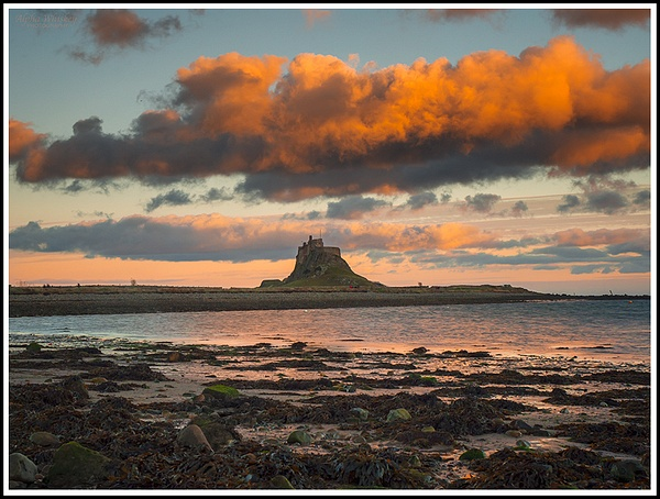 Northumberland Snapshots by Alpha Whiskey Photography