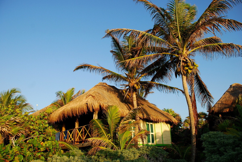 Our palapa