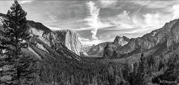 Yosemite Pan 2B by Bill Hanyzewski