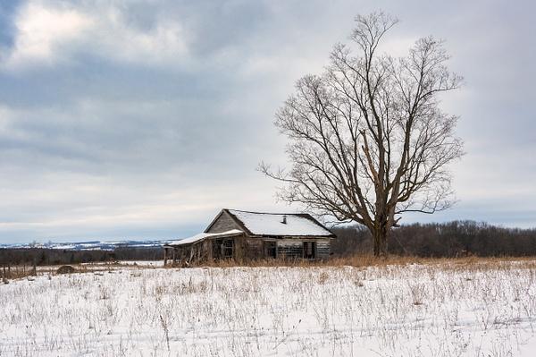 Abandoned Pinkerton House-7 - Abandoned Series - Dee Potter Photography