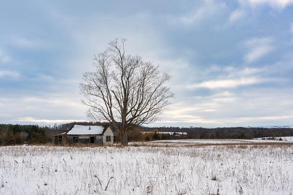 Abandoned Pinkerton House-4 - Abandoned Series - Dee Potter Photography