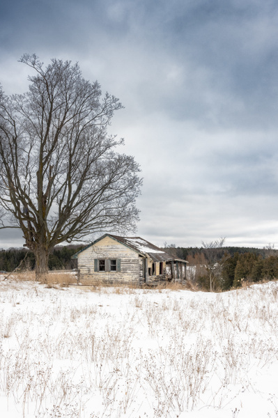 Abandoned Pinkerton House-3 - Abandoned Series - Dee Potter Photography