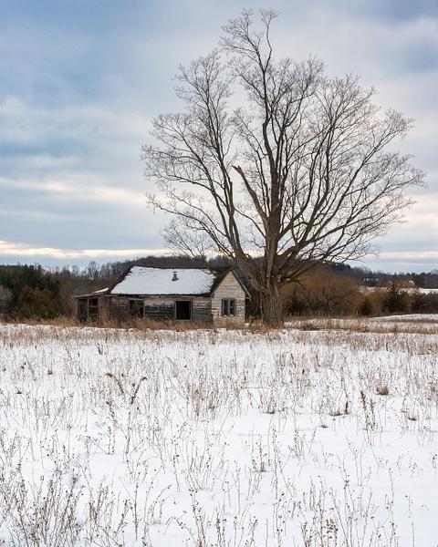 Abandoned Pinkerton House-5 - Abandoned Series - Dee Potter Photography
