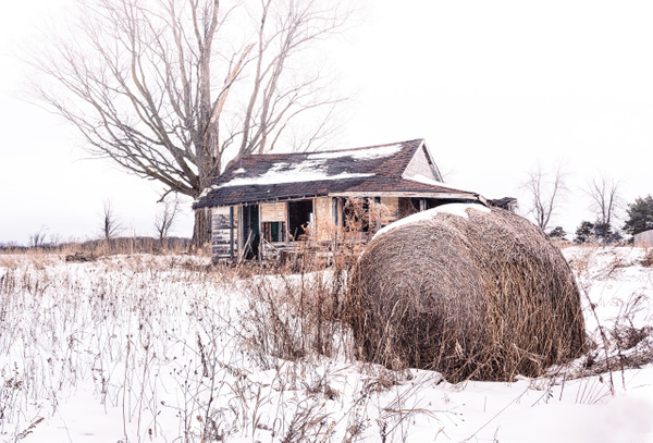 Abandoned Pinkerton Homestead in Snow - White Photos - Dee Potter Photography