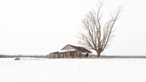 Abandoned Series by DEE POTTER