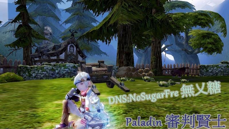 DN_Paladin