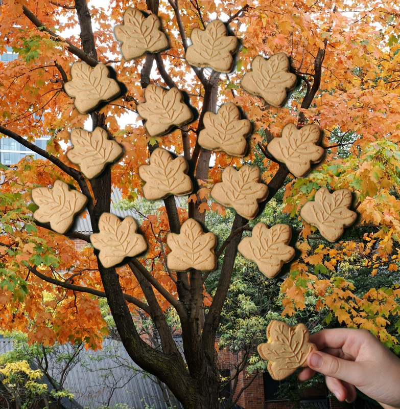 Maple-Cookies